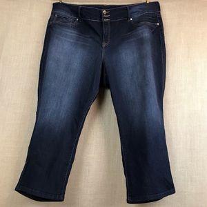 Torrid jeans denim stretch fit size 24